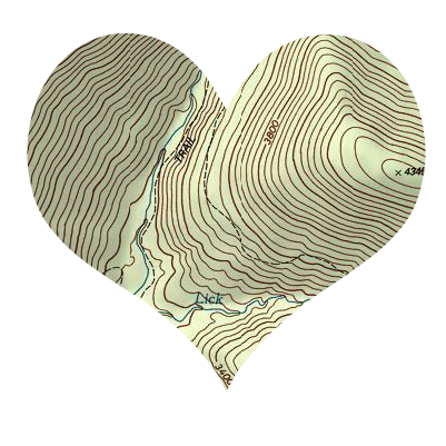 topographical heart map