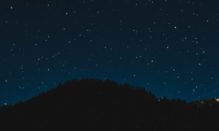 Gazing at the Stars